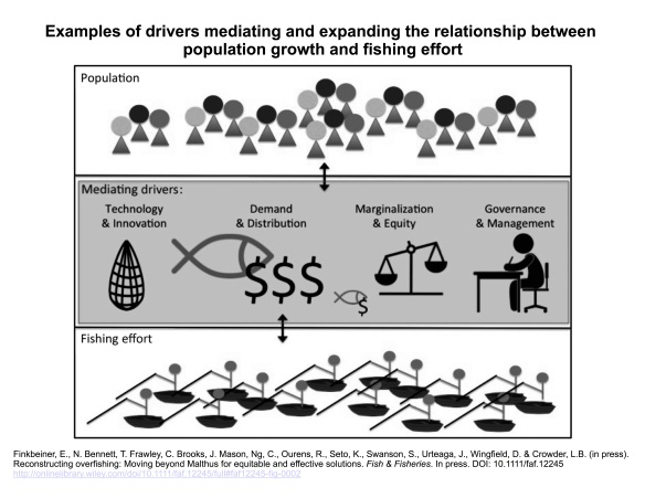 Examples of drivers mediating the relationship between population growth and fishing effort