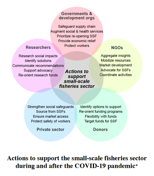 Actions to support small-scale fisheries during and after COVID-19